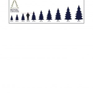 size tree