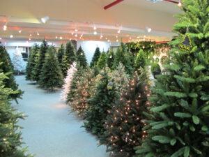 Royal Christmas - Showroom